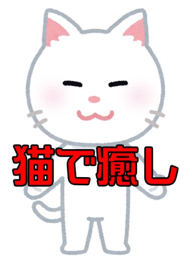 【話題】ジーっと見ても気付かない? 土のうに紛れた白猫のステルス性がすごい